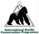 International Gorilla Conservation Programme (IGCP)